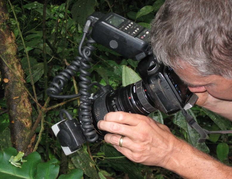 Photo shoot in the jungle