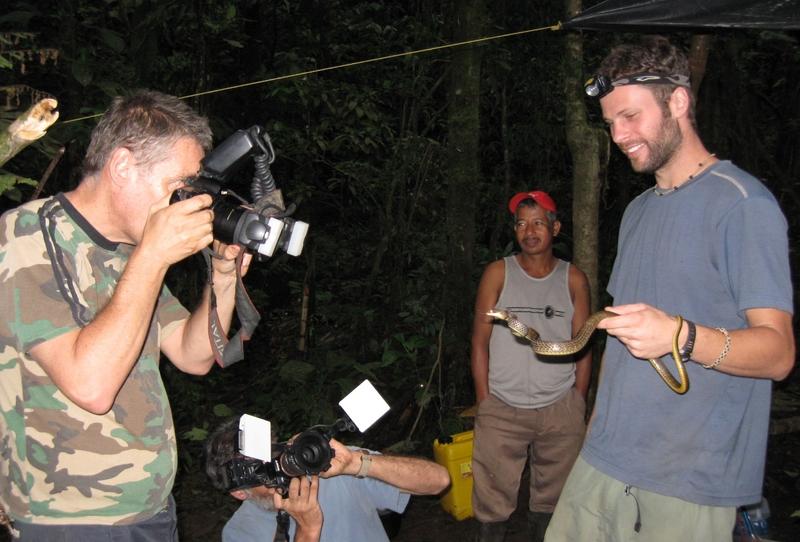 <h3>Expediciones Herpetológicas</h3>